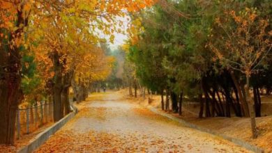 Photo of Badghis Province, Qala-i-Now, Autumn Season