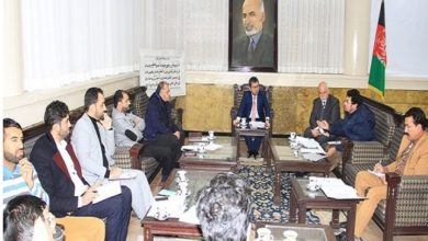 Photo of Meeting Discusses Establishment of National Art House