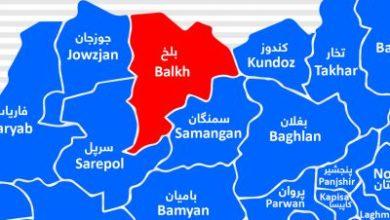 Photo of In Balkh; 14 Anti-Government Militias Kill
