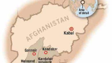 Photo of Taliban Insurgents Killed in their Own Mine Blast