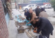 Photo of Taliban Weapons Cache Discovered in Nangarhar